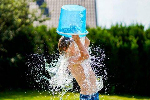 NEDKJØLING: Noen må kjøle seg ned i varmen, enten i en sjø, et tjern, i havet eller med en bøtte med vann.