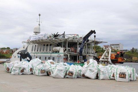 De siste årene har det blitt satt i verk store ryddeaksjoner for å rydde alle strender for plastsøppel som kommer fra havet. På bare en tur samlet Miljødronningen inn 3,2 tonn.