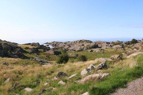 HYTTEPLANAR: I dette området sør for Sirevåg, vil det koma rundt 50 hytter. Torsdag gav Hå kommunestyre tommel opp for prosjektet.