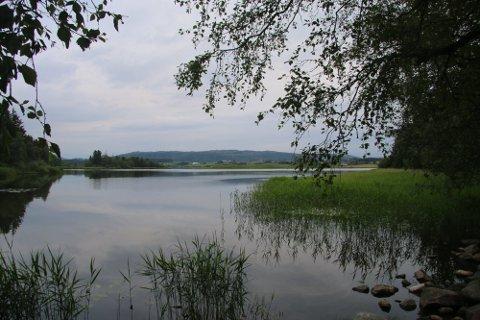 I VATNET: Bane Nor vil skaffa seg ein oversikt over korleis det ser ut i Frøylandsvatnet, dersom dei på eit tidspunkt skulle enda opp med å leggja Klepp stasjon noko ut i vatnet. Det seier Erik Pascal Johansen, prosjektsjef for dobbelsporet i Bane Nor.