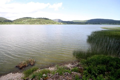GIFTALGER: Du bør ikke ta deg et bad i Hillestadvannet nå, for kvaliteten er rett og slett dårlig. (Arkivfoto)