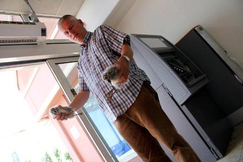 GREPA KAR: Jarlsberg-journalist Lars Ivar Hordnes tok tak i måkeungene og bar dem ut, da de ble stående fast mellom avislokalene og skyvedøra til minibanken.