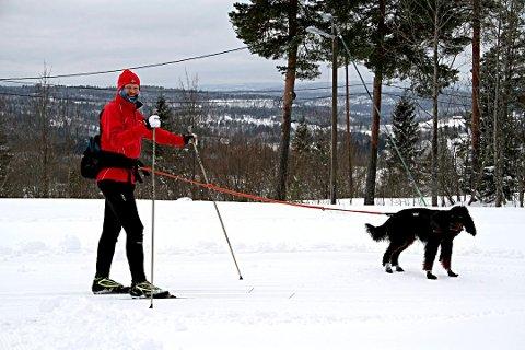 I BÅND: For å skåne hjorteviltet må hundeeiere passe på å ha hundene sine i bånd når de ferdes ute.