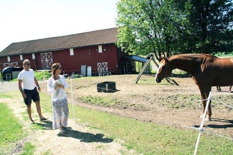 HESTEJENTE: Hanne Nordskog-Inger drømte lenge om å få bo tett på hestelidenskapen. Det får hun nå, på Nedre Lie gård på Gullhaug. Ektemann og tømrer Robert Nordskog-Inger sørget for å bygge stall da de flyttet inn.