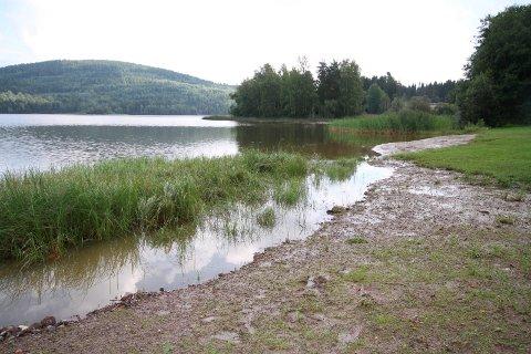 SJEKKET: Vikevannet hadde noe forhøyet bakterieinnhold, men ble godkjent med god margin. Arkivfoto