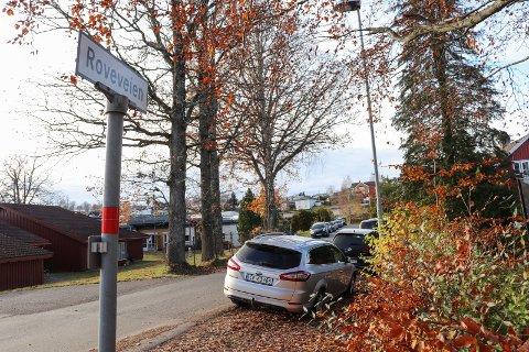STEDET: Hendelsen fant sted i Roveveien i februar. Nå etterlyser politiet tre vitner.