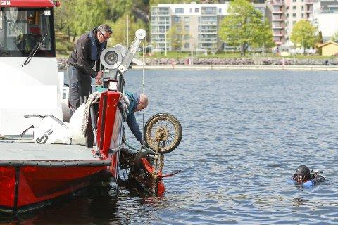 Storfangst i 2019: Det hadde gått rykter om at en moped befant seg på bunnen i havnebassenget i Holmestrand. Og det stemte. Her heises mopeden opp fra sin forurensende tilværelse. Arkivfoto
