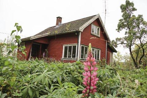 BELIGGENHET: Hytta her på Smørstein ligger bra til både for gående, syklende, padlende og seilende. Begge foto: Lars Ivar Hordnes
