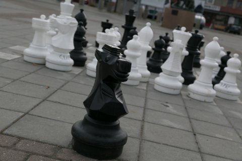 SAVNER MAKKEREN: Denne springeren savner sin makker på sjakkbrettet.