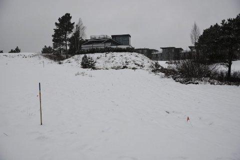 Millioninvestering: Her ønsker Kragerø Golfklubb og Kragerø Golf AS å bygge en internasjonal minigolfbane.