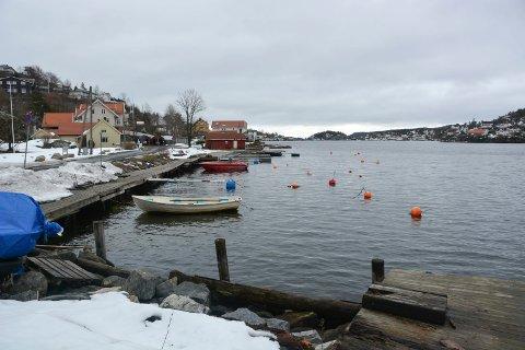 Det er kommet inn tilbud på alle delene av den nye planlagte småbåthavna i Rørvik. Hvilke firmaer som får kontraktene vil ta noe tid å avklare.