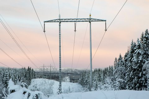 KALDE PRISER: Den vedvarende kulda gir i blant ekstreme strømpriser - nå er nok en grense brutt idet spotprisen har bikket tre kroner i Oslo-området. Foto: Paul Kleiven (NTB)