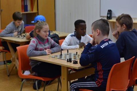 Eline Teigen og fleire andre 4. og 5.-klassingar nytta storfriminuttet tysdag til å kjempa om ein plass vidare i Undarheim skule sin sjakkmeisterskap.