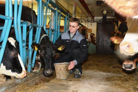 Mjølekua Rakel er truleg den kua i landet som produserte medst EKM-mjølk i fjor.