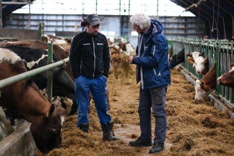 Godt dyrka fôr har mykje å seia for fordøyingssystemet til kyr. Jo betre og sunnare fôr, jo mindre metanutslepp av kupromp- og rap, forklarer Bart van Gool til bonde Kjetil Mehl i Revuro.
