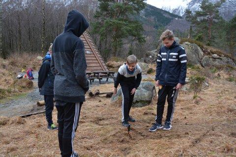 Den gamle leiken «kappe land» engasjerte elevane. Her er det Trym i 7. klasse sin tur til å sikra seg område ved hjelp av kniven.