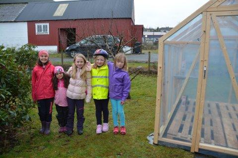 Eit heilt nytt drivhus har kome på plass ved grønsaksåkeren i skulegarden i Uskedalen. Det synest elevane er stor stas. Frå venstre: Ruth Maria, Katrine, Frøy, Angelica og Signe Karine.
