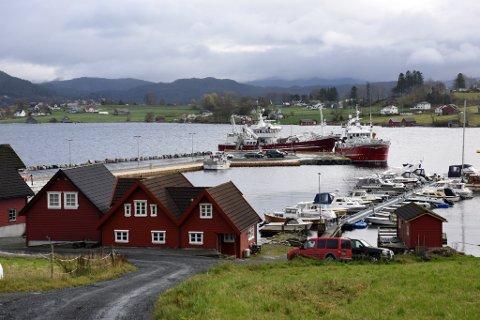 NYEHAMNA: Her ligg «Sjohav» og «Tunfisk» (raudt skrog) og eit par mindre båtar til kai i den nye fiskerihamna. Bildet vart tatt seint i oktober i fjor.