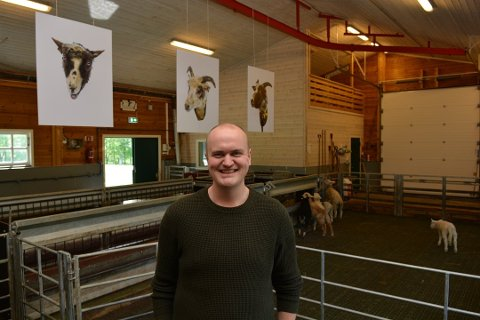 Torstein Lund Eik er ein av kunstnarane som til helga opnar utstilling i Galleri G Guddal. Då har han med seg både dronefotografi og saueportretta som han viste på ei utstilling under Sauens dag i mai. (Arkivfoto).