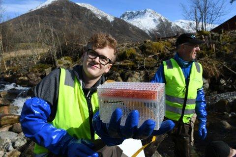 FRÅ BIOLOGIGRUPPA: Karsten Sande frå KVV si biologigruppa viser fram ein av dei 10 plastboksane med egg frå villaks som tysdag vart planta ut i Melselva.