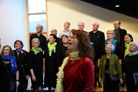 Rosendal Songlag og dirigent Eva Megyesi (fremst) er klare for korfest saman med Røysterett for Alle og åtte andre kor frå fylket.