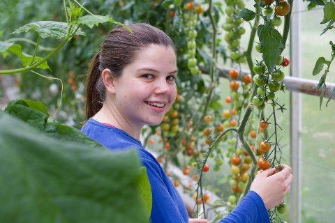 VARIERT: Det vert ein variert sommar for Thea Vaage (23). Ho skal vera valkampsjef for Kvinnherad Arbeidarparti, lærar på forskarfabrikken sin sommarskule, og plukka agurkar.