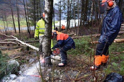 Berit Dale sagar så flisa fyk, medan Audun Lund Eik (instruktør, bak treet) og Helga Tveit ser på.