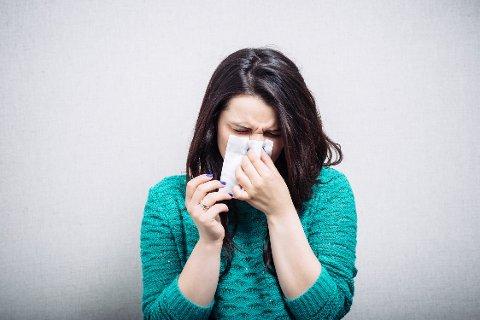 Mange er allergiske mot trepollen, og kan gle seg over at ein vaksine i pilleform snart er tilgjengeleg.