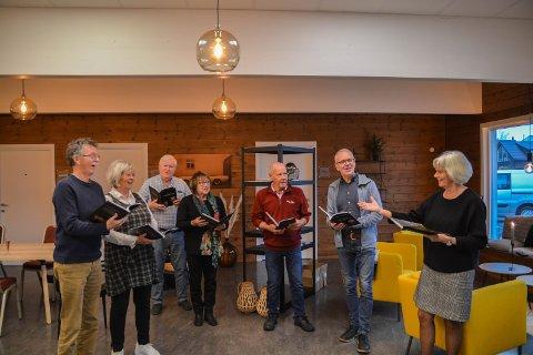 GJE MEG EIN A: Boknemda gir dirigenten ein a. Frå venstre forfattar Aasmund Taarn Sande, Bjørg Brækhus, Arne Gjerde, Alvhild Koløy, Øyvind Særsten, Arne Hauge (leiar) og dirigent Kari Aalvik Tarberg.