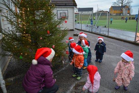 NY TRADISJON: Barna ved Sunde barnehage held no på å pynta eit juletre på barnehagen sitt uteområde. Og pynten har barna laga sjølve. Frå venstre: Vaksen Meret Heimvik, Oliver Smorri (oransje jakke), Amalie (med ryggen til) og Aurora (rosa dress). Bak vaksen Anne Kaldestad (i midten) skimtar vi Lise, medan Oliver står i grøn jakke rett framføre henne. Med ryggen til rett til venstre for Oliver skimtar vi Ylva, medan Tobias står like bak henne. Til høgre for Anne Kaldestad står Matteus.