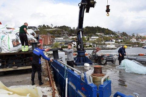 Her er mesteparten av boset lossa frå «Cornelia» og lasta over på lastebillen til Kjell Inge Eide (t.v.). Vidare frå venstre ser me Ingvar Hølland, Svein Helge Hølland og Tor Bakke.