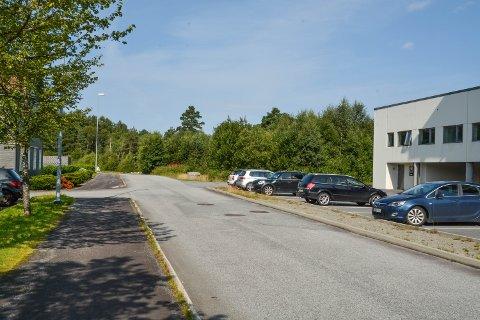 Lonavegen skal forlengast innover i skogen. Det vil utløysa tett på 40 dekar med byggeland i området mellom Lonabrotet og Bogsnes. No vert vegen lyst ut på anbod.