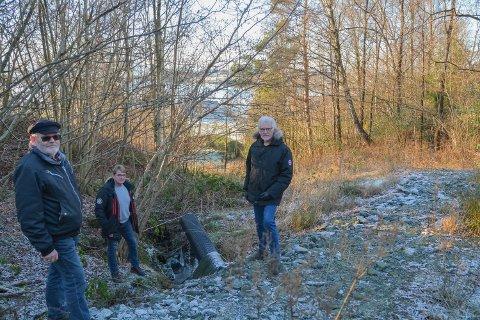 UROA: Bebuarar i Tofte-området er uroa for at det enno ikkje er gjennomført erosjonssikring i denne ravinen. F.v.: Roar Sæbø, Karl Ingve Eide og Tor Bjelland.