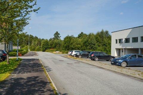 Lonavegen skal forlengast innover i skogen. Det vil utløysa tett på 40 dekar med byggeland i området mellom Lonabrotet og Bogsnes. Brødrene Musland Maskin AS er tildelt kontrakten for tiltaket.
