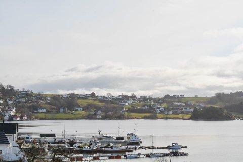 TILTAK: Det blir no sett i gang tiltak for å avgrensa risikoen for eit kvikkleireskred i dette området på Halsnøy.