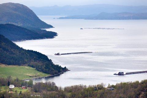 HÅGARDSNESET: Lokaliteten Hågardsneset (på utsida av Snilstveitøy) er den du ser nærast på dette bildet som er tatt frå Neslia, høgt oppe i skogen. (Arkivfoto).