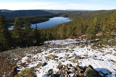 DEBATT: Formannskapet i Kongsberg har sagt nei til utvidelse av Barmen naturreservat til å omfatte store deler av Gruveåsen. Men ikke alle er like enige.