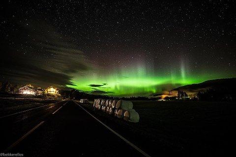 VINNER: Dette bildet vant i september.Bildet er tatt av Simen Bekjorden.