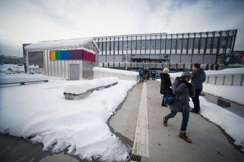Vil bli universitet: Høgskolen i Sørøst-Norge har søkt om endret status.