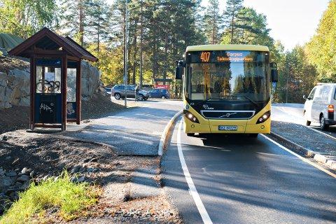 KANTSTOPP: I Ove Gjeddes vei ble kantstoppene innført i 2012.