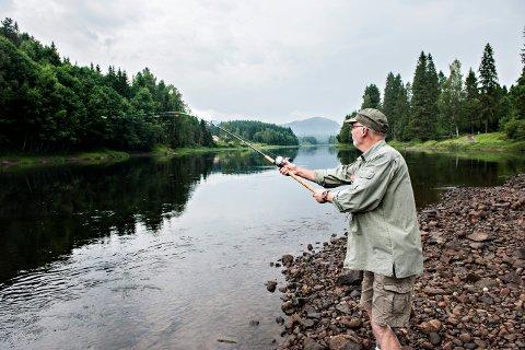 Det har vært en god laksesesong så langt i år, og per tirsdag er 104 laks dratt i land. På bilde ser vi laksefisker Finn Jensen som prøver lykken. (Bildet er fra 2014).