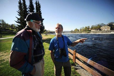 FRYKTER FOR FUGLENE: Frank Brandbu (t.v.) og Magne Sjøblom er begge medlemmer i Norsk ornitologisk forening. De er bekymret for fiskemåkene som hekker i Nybrufossen, når den nye padlebølgen skal bygges.