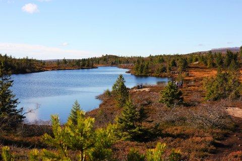 POPULÆRT: Blefjell er et populært turområde, både for hytteeiere og tilreisende, sommer som vinter.