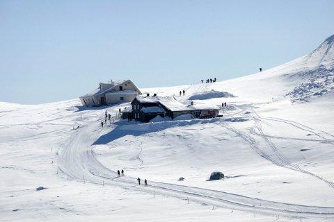 Hvordan er skiløypene akkurat nå? Her får du svaret. Dette bildet er fra Høgevarde på Norefjell.