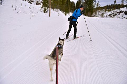 – VIS HENSYN: Det er ikke forbudt for hund i lysløypa i Funkelia. Terje Bomann-Larsen og andre ønsker likevel ikke at skisporet blir ødelagt.