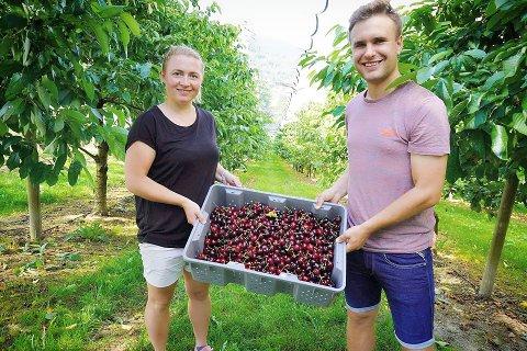 GØY MED BÆR: Ekteparet Mari og Kristoffer Skolem driver bærgården Nordre Foss i Hvittingfoss. Gården har både jordbær, bringebær, moreller, epler, rips og 450 tusen honningbier.
