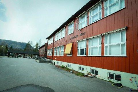 SALG: De gamle skolene i Flesberg selges, men foreløpig har ikke noen bud kommet inn.