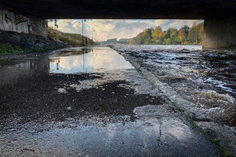 FLOM: Det skal regne mye i dagene som kommer og det varsles om flomfare. Bildet er fra flommen i fjor høst.