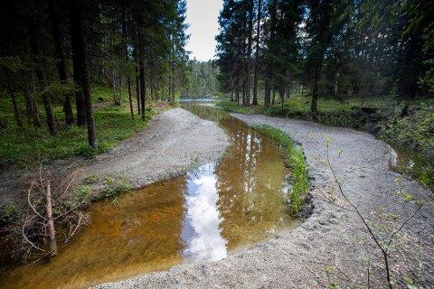 SAND: Geir Christensen i Kongsberg kameraklubb tok dette bildet i juni. Fortsatt fyller sand Skriverplassevja. Kommunen har fortatt ikke konkludert i saken.