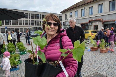DRUEPLANTER: Oddveig Saga kjøpte et par drueplanter på hagedagen lørdag.